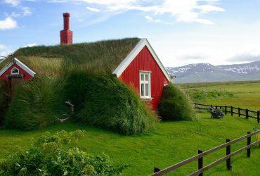 zelena strecha