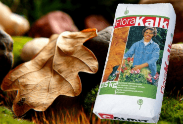 Flora Kalk