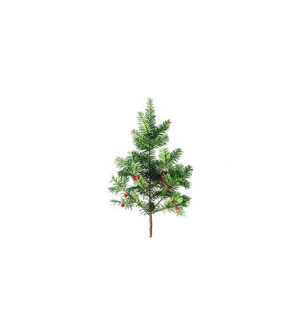 ibv - stromcek thumb - Blog