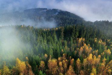 ibv - autumn 548361 1920 370x250 - Nový katalóg pre jeseň 2018