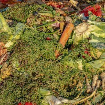 ibv - compost 3663514 640 350x350 - Kompostér pre vašu záhradu aj dvor